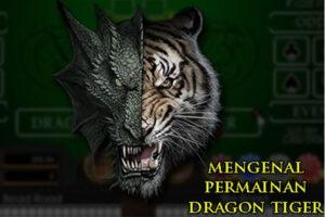 Menguasai Judi Dragon Tiger Online dalam Waktu Singkat